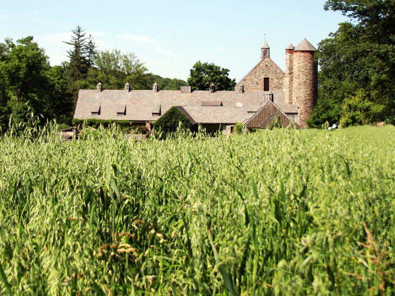 stone-barns-center.jpg