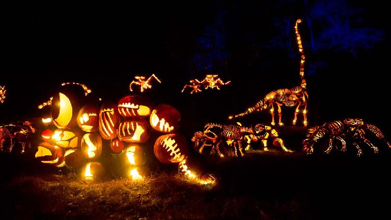 Dinosaurs at The Great Jack O'Lantern Blaze